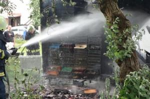 29.5.2016 Požar čebelnjaka pri Gosarju